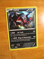 LP Pokemon YVELTAL Card BLACK STAR PROMO Set XY32 Battle Arena Deck XY Holo