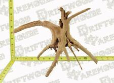 New ListingAquarium Driftwood Spider Wood Fish Large Medium Natural Branch Root Sinking