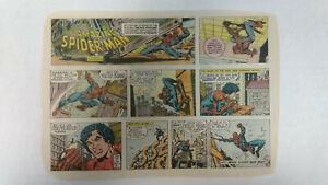 AMAZING SPIDER-MAN Newspaper Comic Strip                  Sunday March 11th 1979