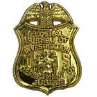 L-18 FBI lapel pin