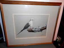 LIMITED EDITION LEE JAYRED LITHOGRAPH   [MOURNING DOVE]