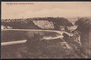Avon & Somerset Postcard - The Sea Walls, Durdham Downs, Bristol  DR823
