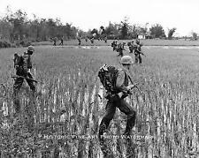 VIETNAM WAR PHOTO US MARINES SWEEP RICE PADDIES OP CHINOOK II 1967  8x10 #21859