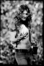 LED ZEPPELIN ROBERT PLANT WITH HOLDING DOVE LIVE IN CONCERT PHOTO POSTER PRINT