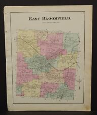 New York  Ontario County Map East Bloomfield Township 1874 W15#29