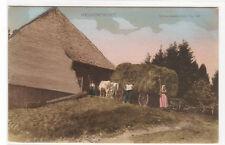 Heu Einfahrt Hay Wagon Barn Schwarzwald Germany 1910c postcard