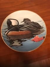 American Waterbirds Plate Collection