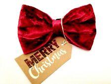 Luxury Red Velvet Dog Bow Tie