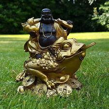 Happy Buddha auf Frosch Deko Figur Feng Shui Statue Budda on Frog Joga Glück