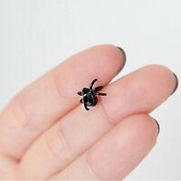 Women Lady Art Design Girl Black Lovely Tiny Stud Spider Earring Fashion