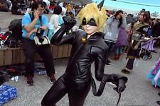 Anime Miraculous Ladybug Cat Noir Cosplay Costume Full Outfit Custom Made
