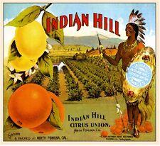Pomona Indian Hill #3 Orange Citrus Fruit Crate Label Art Print