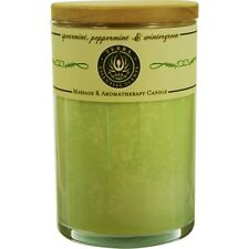 Spearmint, Peppermint & Wintergreen Massage & Aromatherapy Soy Candle 12 oz Tumb