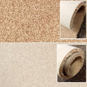 Clearance   Cream Carpets Beige Carpet Felt back Stain Resistant  4m Wide 10mm