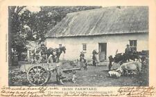 Ireland Irish Farm Yard Horse Carriage Postcard 1905