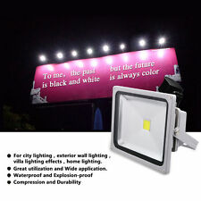 2 x 30W LED Floodlight Power Cool White Outdoor Security Light Flood Light