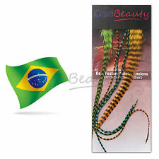 Real Feather Hair Extensions - 6 Salon Quality Grizzly Feathers 20cm - 33cm Long