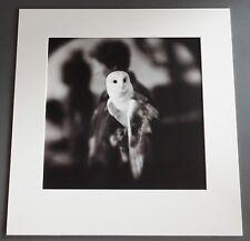 Keith Carter Screech Owl 2004 #3/35 Original Gelatin Silver Photograph Signed