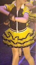 Bumble bee ballet costume