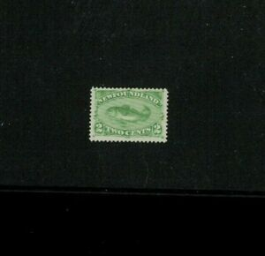 Newfoundland (Canada) #46 Mint no Gum F-VF. Cat.75.00, Net 25.00