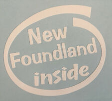 NEW FOUNDLAND INSIDE DOG ON BOARD CAR WINDOW STICKER DECAL IN WHITE ALL COLOURS