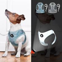 Hundegeschirr und Leine für Kleine Hunde Reflektierend Welpengeschirr Chihuahua