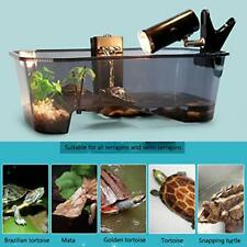 Tank Turtle Reptile Aquarium Lake Platform Built Habitat In Water Fish Small