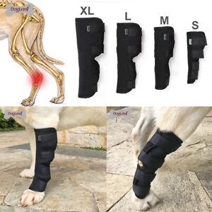 Adjustable Dog Protector Rear Leg Knee Injuries Support Brace Hock Wrap Straps