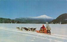 Postcard Husky Dog Team Alaska