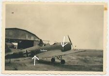 Flugzeug/Airplane 3JG Gruppenemblem/Maling/Wappen gekreuzte Seitengewehre(1409)