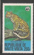 Burkina Faso #511 (A15) VF MNH - 1979 250fr Leopard - WWF