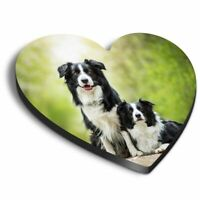 Heart MDF Magnets - Border Collie Couple Cute Animals Dogs  #8626
