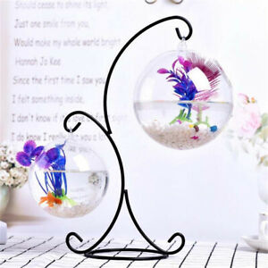 Aquarium Fish Tank Hanging Glass Bowl Vase Plant Flower Wall Round Free Shipping