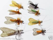 6 Realistic Adult Caddis Collection