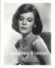 NATALIE WOOD Glamour Portrait Sexy movie star B&W photo Busty RARE Pose #313