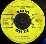 "R.Zee Jackson Reggae Disco Medley 12""Echo bw Leroy Brown Love Another Love VINYL"