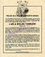 Rules In A Welsh Terrier's House