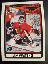 1990-91 OPC Chicago Blackhawks Hockey Card #214 Jim (Jimmy) Waite RC Mint
