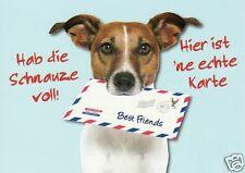 """lustige Postkarte, Hund """"Schnauze voll...hier ist ne echte Karte"""""""