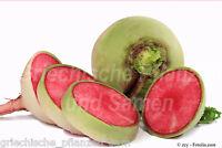 🔥  Radieschen Radies Wassermelone  50 Samen Watermelon radish Rettich red meat