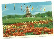 Flags of the NEtherland Provinces Dutch Windmill Holland MI Michigan  Postcard