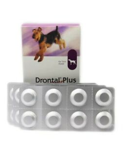 1Drontal Plus Sabor lote 8 unidades(1 tableta) Antihelmíntico de amplio espectro