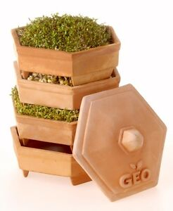 GEO Terracotta Sprouter Starter Kit With 3 Free Packs Of Seeds