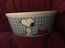 New listing Peanuts Snoopy with Woodstock~Small Pet Bowl~All Gone~Dog Ceramic~New