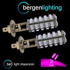 2x H1 ROSA 60 LED Delantero Bombillas De Luces Antiniebla de alto voltaje kit