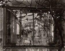 1953/80 Original JOSEF SUDEK Silver Gelatin Photograph ~ SCULPTURE GARDEN Czech