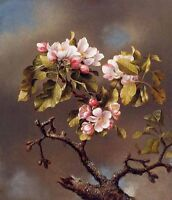 Huge Oil Martin Johnson Heade - Branch of Apple Blossoms against a Cloudy Sky