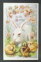 Postcard Easter Greeting Bunny Chicks Flowers Silver Embossed Vintage 1911