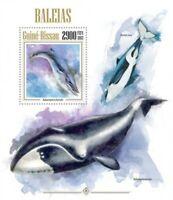 Guinea-Bissau - 2013 Sei Whale  - Stamp Souvenir Sheet GB13405b