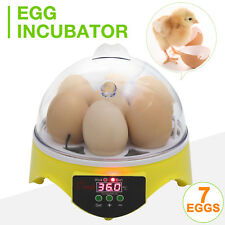 Digital Mini 7-Egg Bird Automatic Clear Chicken Duck Egg Incubator Hatcher